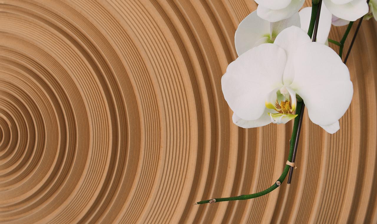 The Art of Acoustics (part 2)